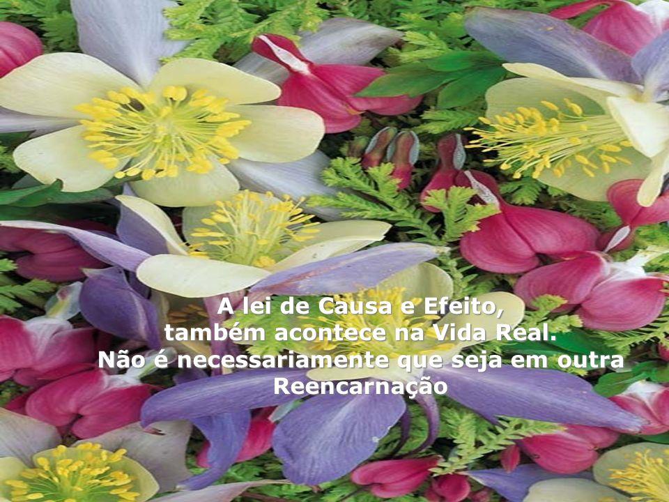 Não vos enganeis: de Deus não se zomba; pois aquilo que o homem semear, isso também ceifará. Gálatas 6:7