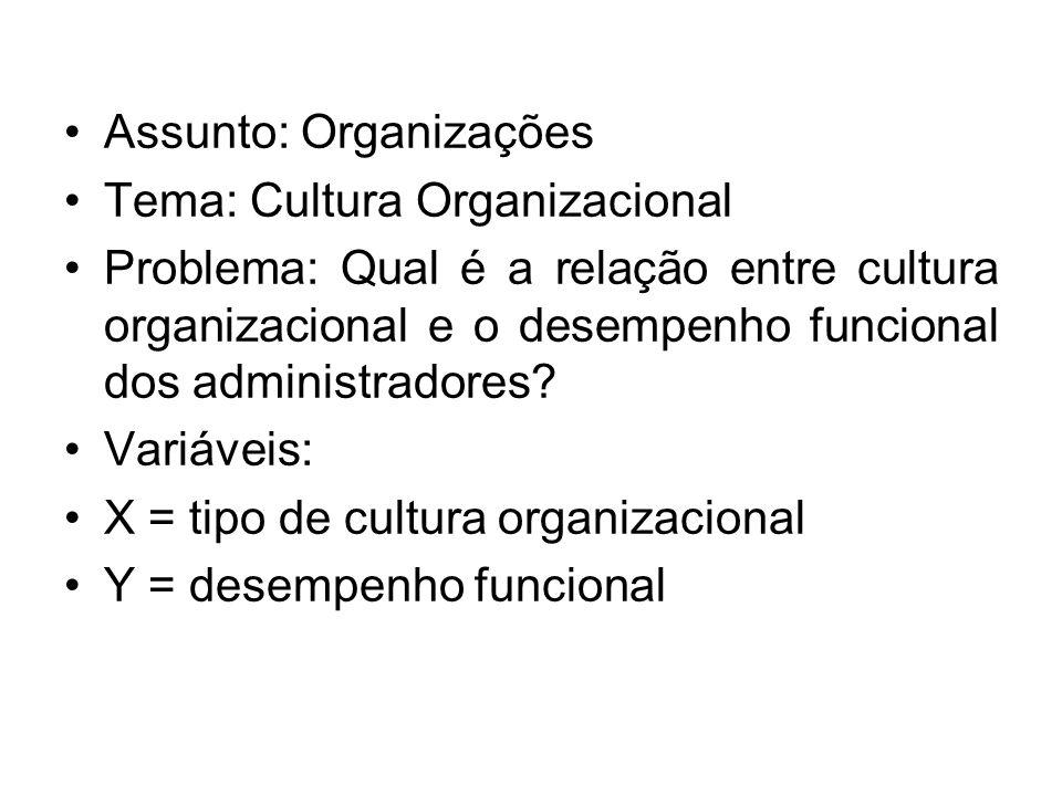 Assunto: Organizações Tema: Cultura Organizacional Problema: Qual é a relação entre cultura organizacional e o desempenho funcional dos administradores.