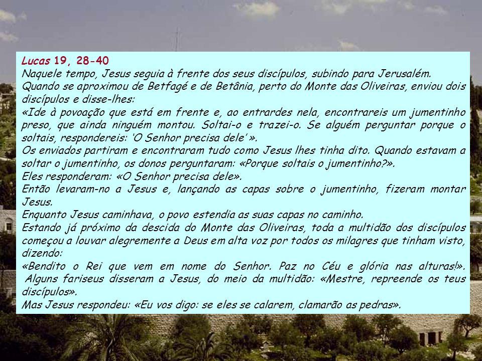 Lucas 19, 28-40 Naquele tempo, Jesus seguia à frente dos seus discípulos, subindo para Jerusalém.