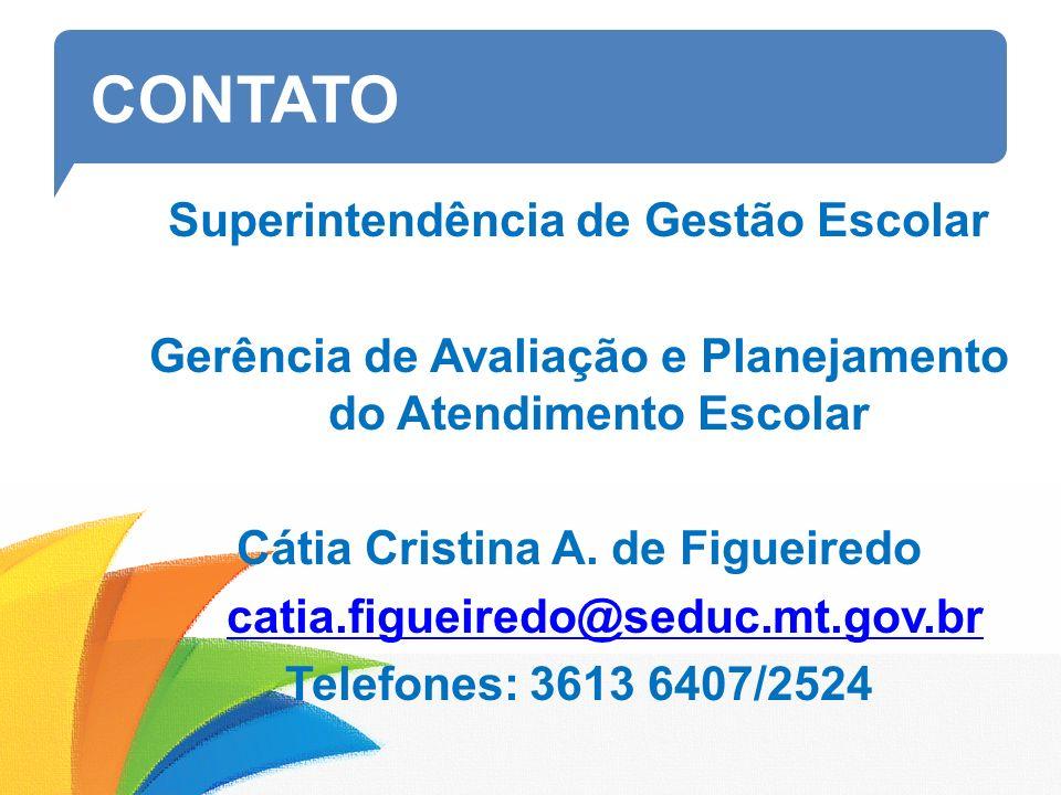 CONTATO Superintendência de Gestão Escolar Gerência de Avaliação e Planejamento do Atendimento Escolar Cátia Cristina A.
