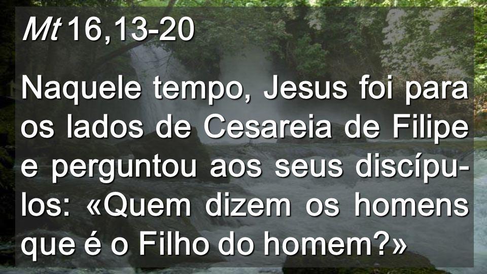 Também Eu te digo: Tu és Pedro; sobre esta pedra edificarei a minha Igreja e as portas do inferno não prevalecerão contra ela.