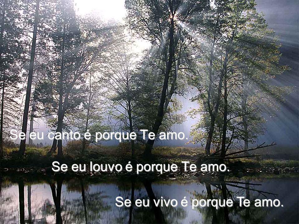 Se eu canto é porque Te amo. Se eu louvo é porque Te amo. Se eu vivo é porque Te amo.