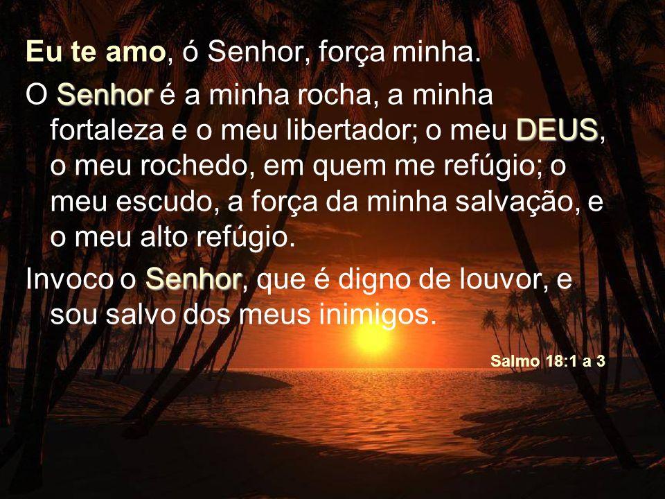 Eu te amo, ó Senhor, força minha.