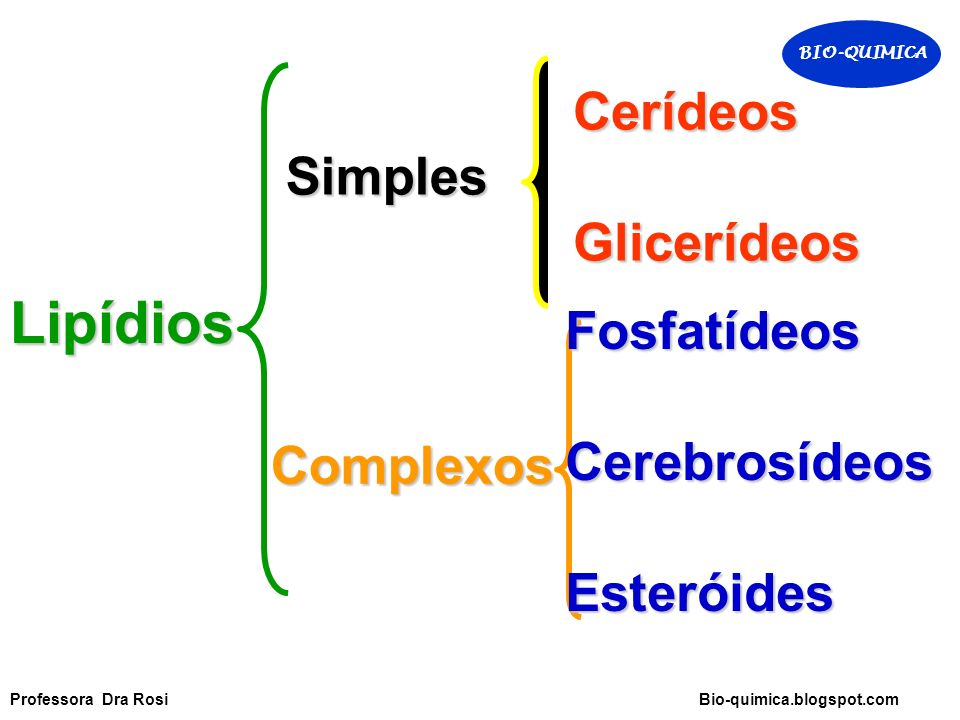 Lipídios Simples CerídeosGlicerídeos Complexos FosfatídeosCerebrosídeosEsteróides BIO-QUIMICA Professora Dra Rosi Bio-quimica.blogspot.com