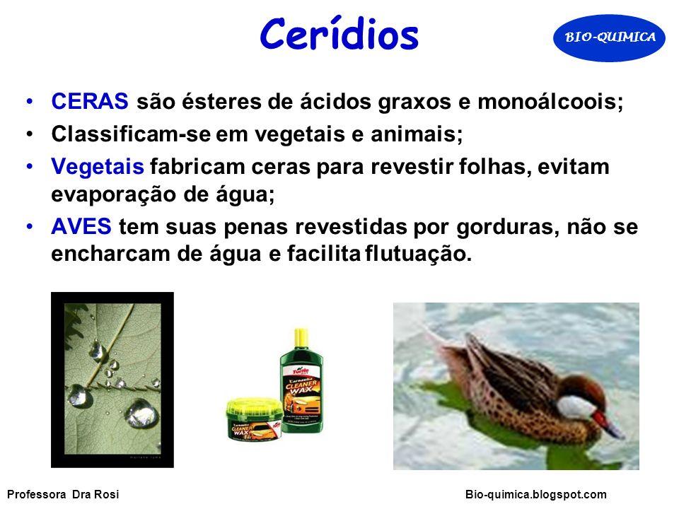 Cerídios CERAS são ésteres de ácidos graxos e monoálcoois; Classificam-se em vegetais e animais; Vegetais fabricam ceras para revestir folhas, evitam evaporação de água; AVES tem suas penas revestidas por gorduras, não se encharcam de água e facilita flutuação.