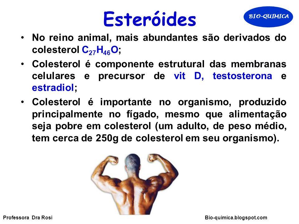 Esteróides No reino animal, mais abundantes são derivados do colesterol C 27 H 46 O; Colesterol é componente estrutural das membranas celulares e precursor de vit D, testosterona e estradiol; Colesterol é importante no organismo, produzido principalmente no fígado, mesmo que alimentação seja pobre em colesterol (um adulto, de peso médio, tem cerca de 250g de colesterol em seu organismo).