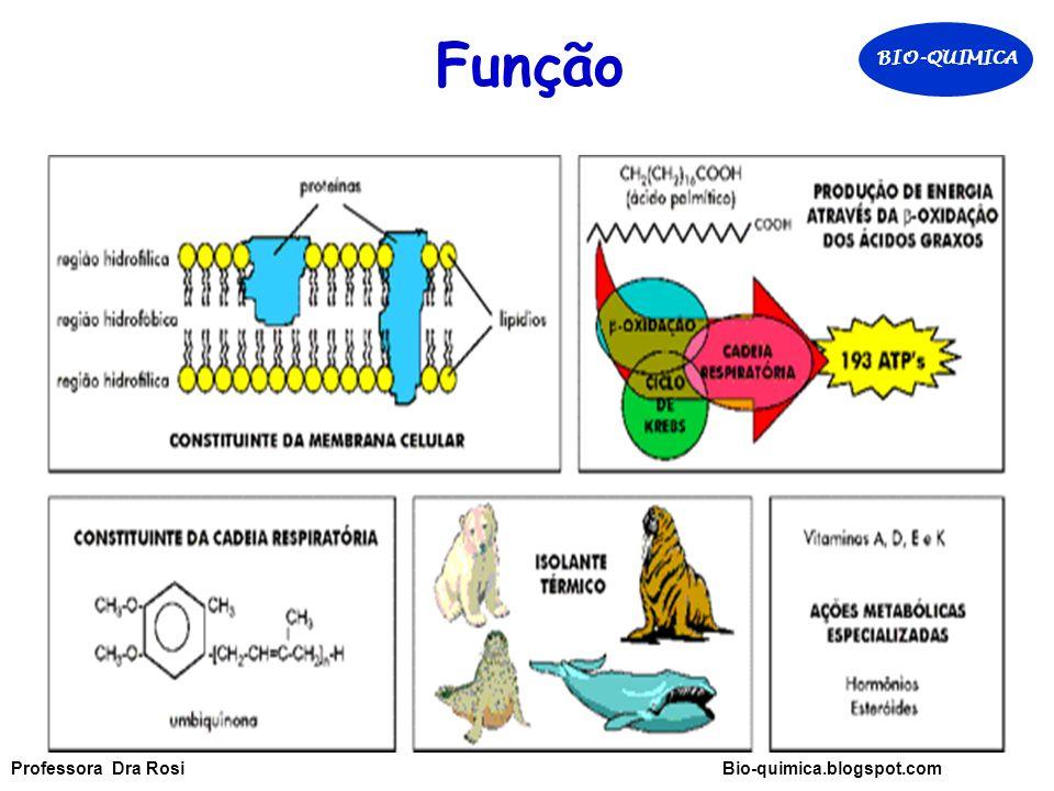 Função BIO-QUIMICA Professora Dra Rosi Bio-quimica.blogspot.com
