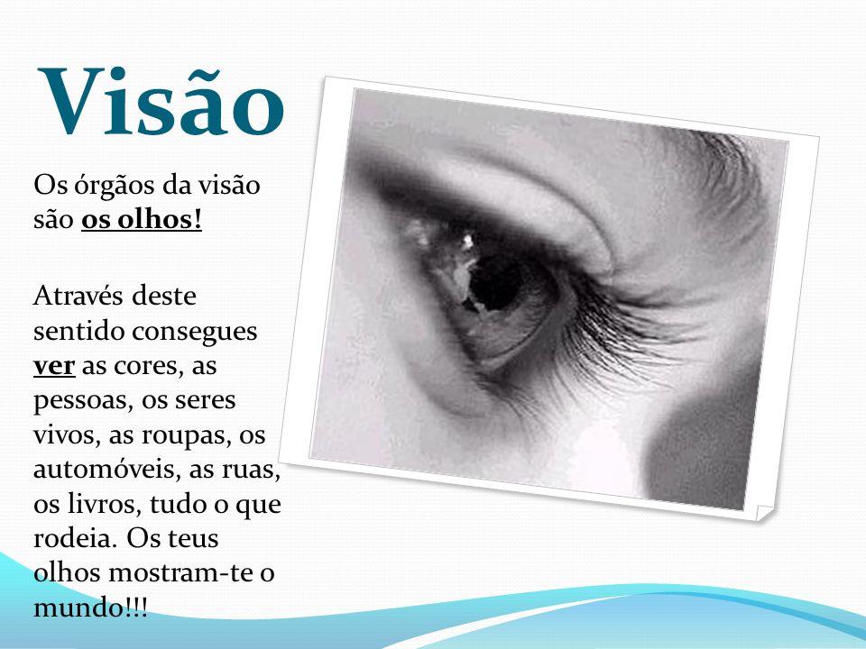 Visão Os órgãos da visão são os olhos.