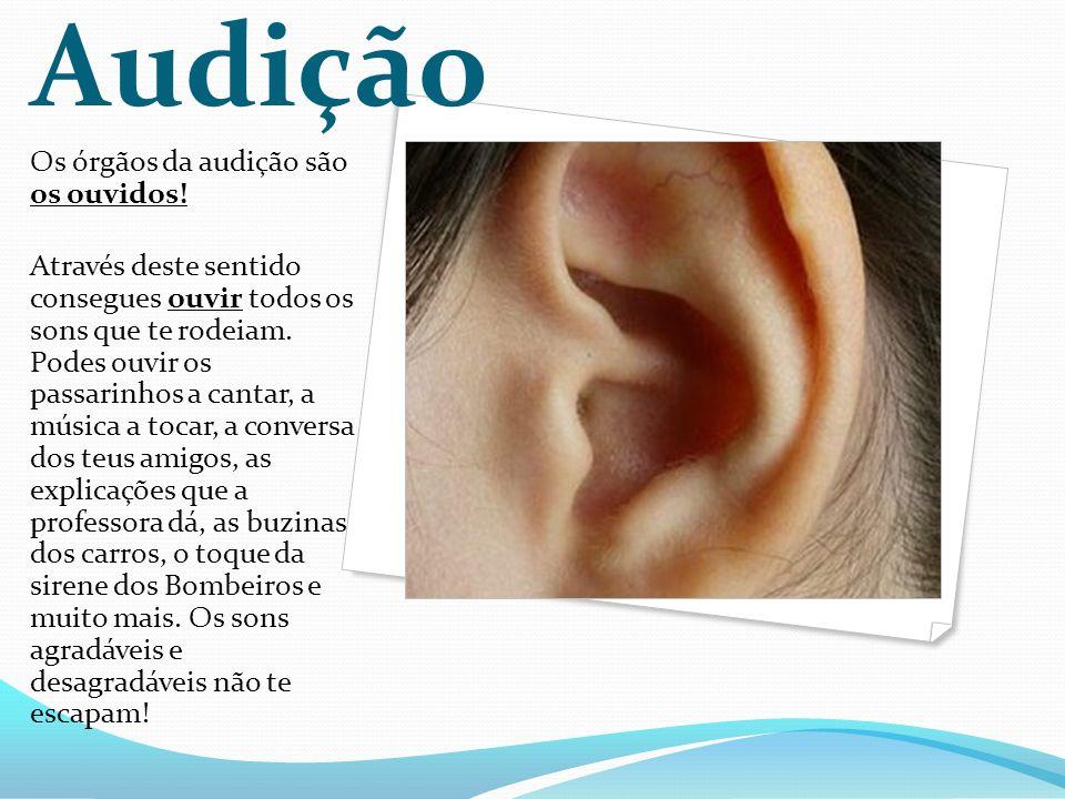 Audição Os órgãos da audição são os ouvidos.