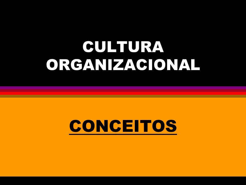 CULTURA ORGANIZACIONAL CONCEITOS