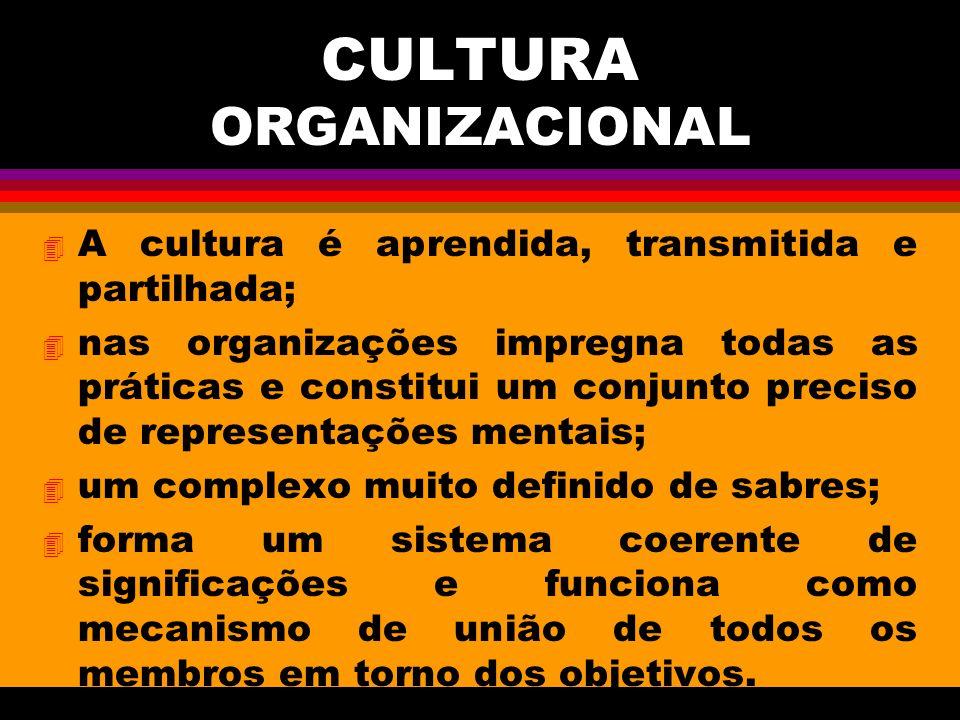 CULTURA ORGANIZACIONAL 4 A cultura é aprendida, transmitida e partilhada; 4 nas organizações impregna todas as práticas e constitui um conjunto preciso de representações mentais; 4 um complexo muito definido de sabres; 4 forma um sistema coerente de significações e funciona como mecanismo de união de todos os membros em torno dos objetivos.