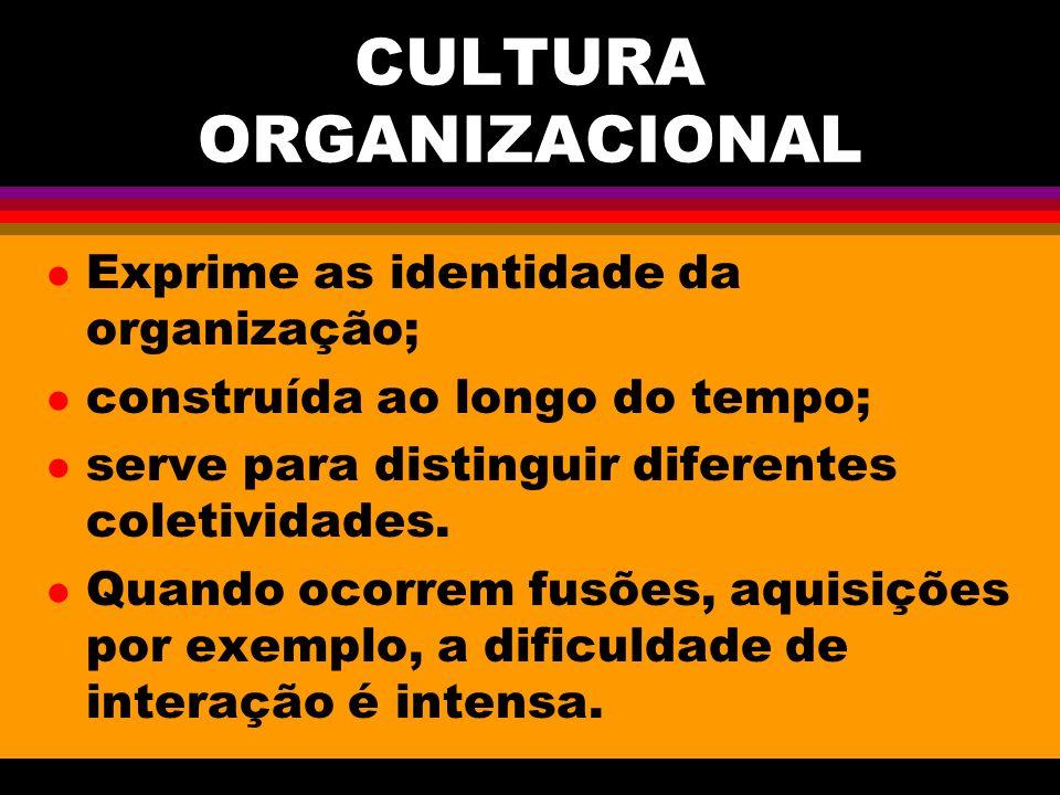 CULTURA ORGANIZACIONAL l Exprime as identidade da organização; l construída ao longo do tempo; l serve para distinguir diferentes coletividades.