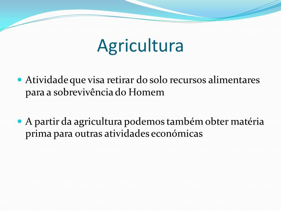 Agricultura Atividade que visa retirar do solo recursos alimentares para a sobrevivência do Homem A partir da agricultura podemos também obter matéria prima para outras atividades económicas