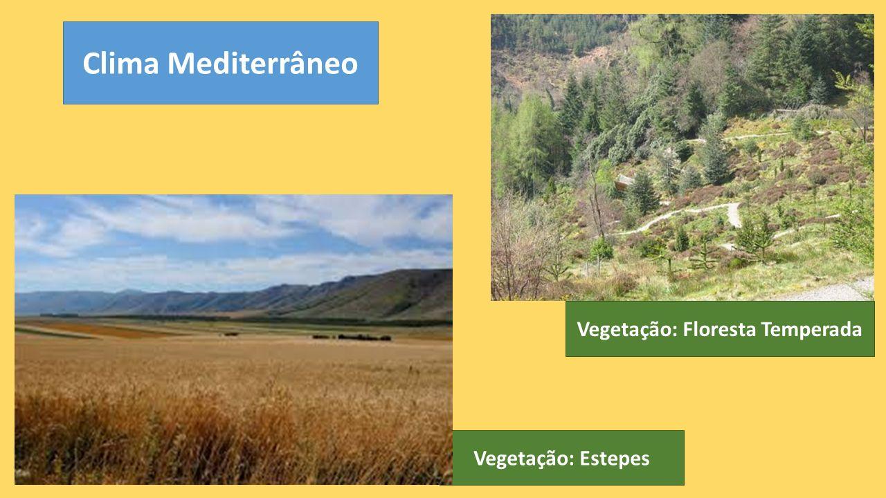 Clima Mediterrâneo Vegetação: Estepes Vegetação: Floresta Temperada