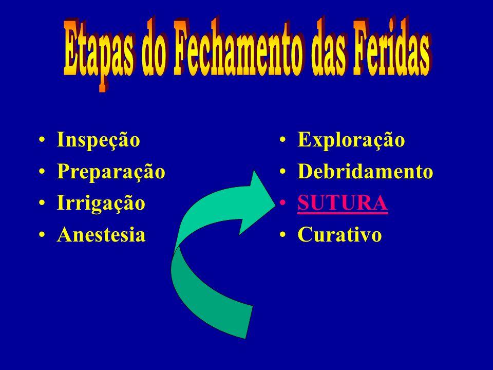 Inspeção Preparação Irrigação Anestesia Exploração Debridamento SUTURA Curativo