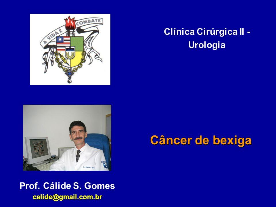 Clínica Cirúrgica II - Urologia Câncer de bexiga Prof. Cálide S. Gomes calide@gmail.com.br