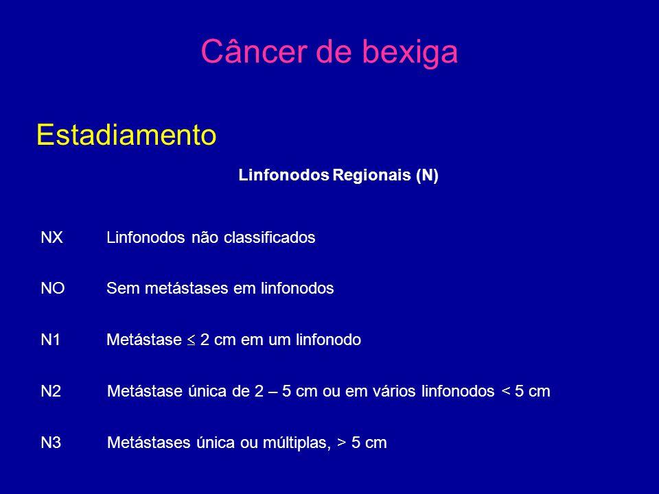 Câncer de bexiga Estadiamento Linfonodos Regionais (N) NX Linfonodos não classificados NOSem metástases em linfonodos N1Metástase  2 cm em um linfonodo N2 Metástase única de 2 – 5 cm ou em vários linfonodos < 5 cm N3 Metástases única ou múltiplas, > 5 cm