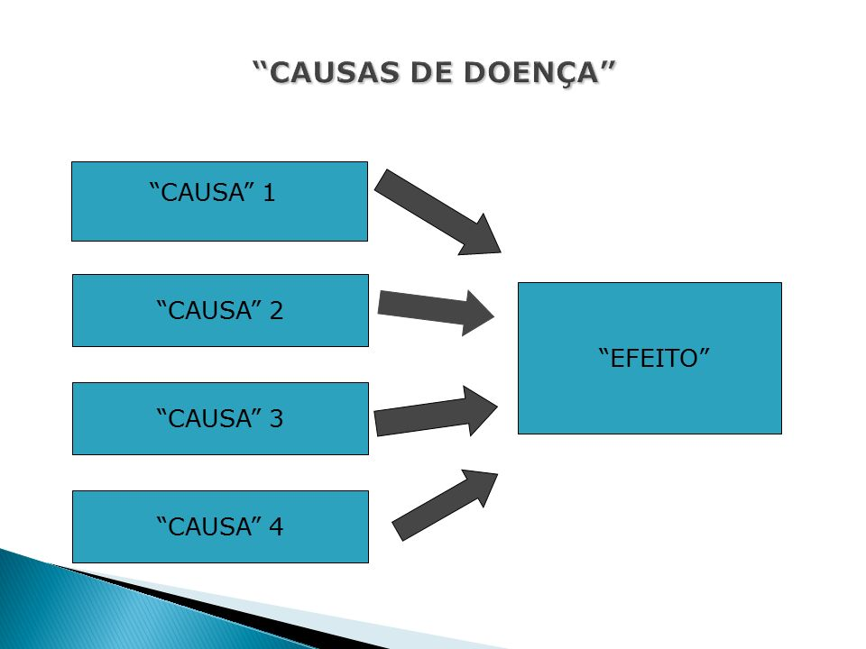 EFEITO CAUSA 1 CAUSA 2 CAUSA 3 CAUSA 4