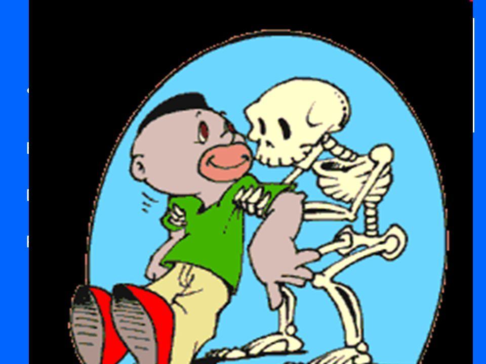 É muito importante porque: É o suporte do corpo – para ficar de pé é preciso ossos. Dá força ao organismo. Protege os órgão internos – Coração, pulmõe