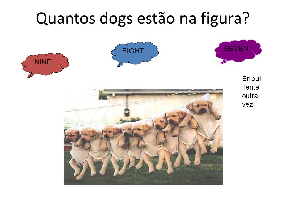 Quantos dogs estão na figura? NINE EIGHT SEVEN Errou! Tente outra vez!
