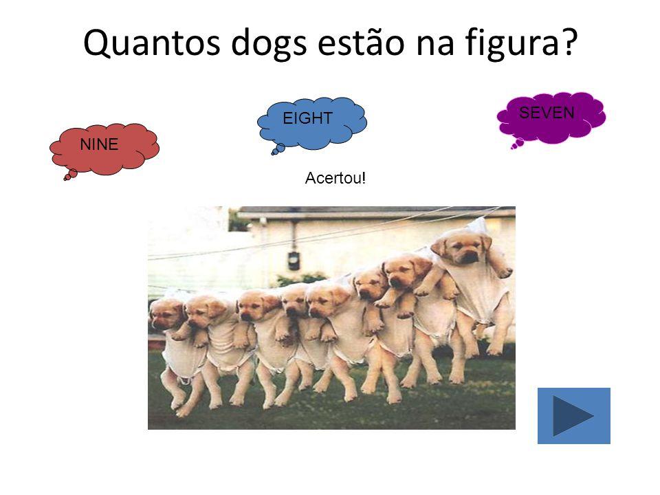 Quantos dogs estão na figura? NINE EIGHT SEVEN Acertou!