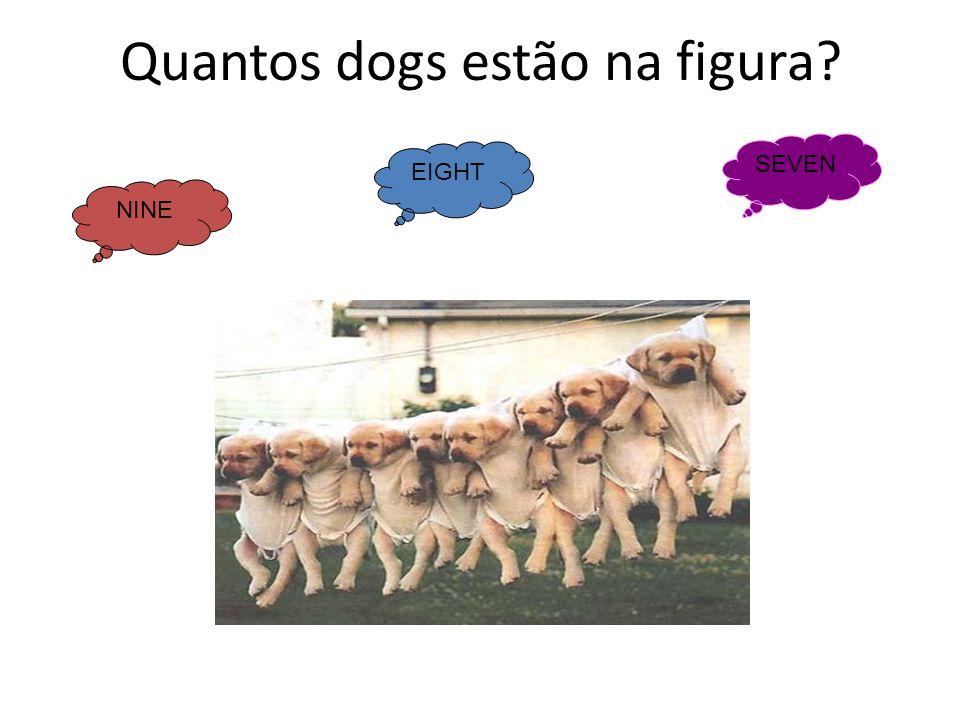 Quantos dogs estão na figura? NINE EIGHT SEVEN