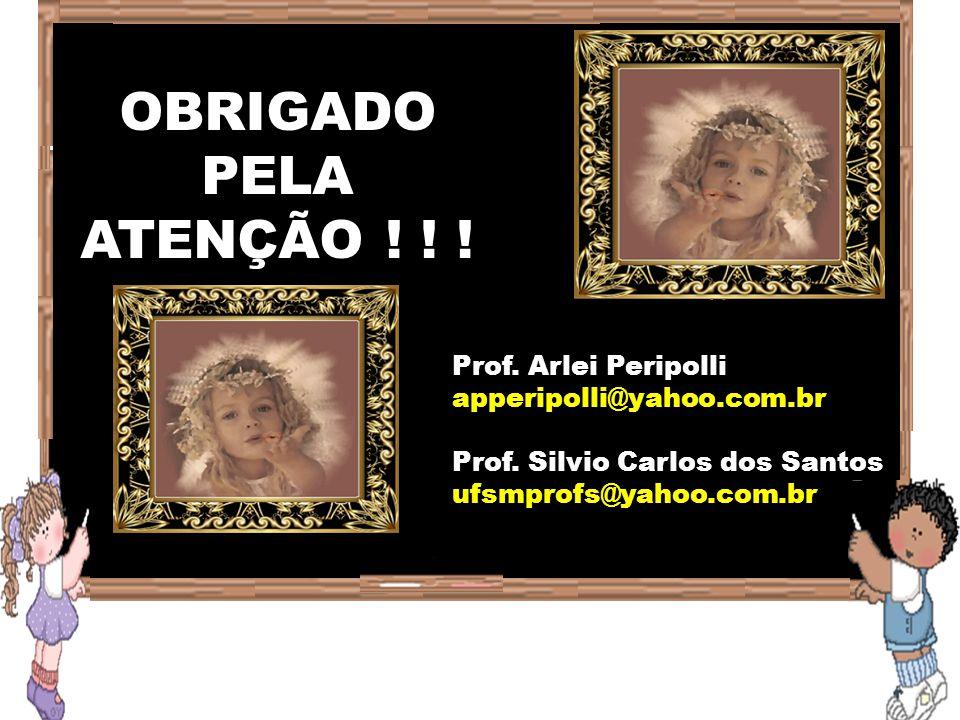 OBRIGADO PELA ATENÇÃO ! ! ! Prof. Arlei Peripolli apperipolli@yahoo.com.br Prof. Silvio Carlos dos Santos ufsmprofs@yahoo.com.br