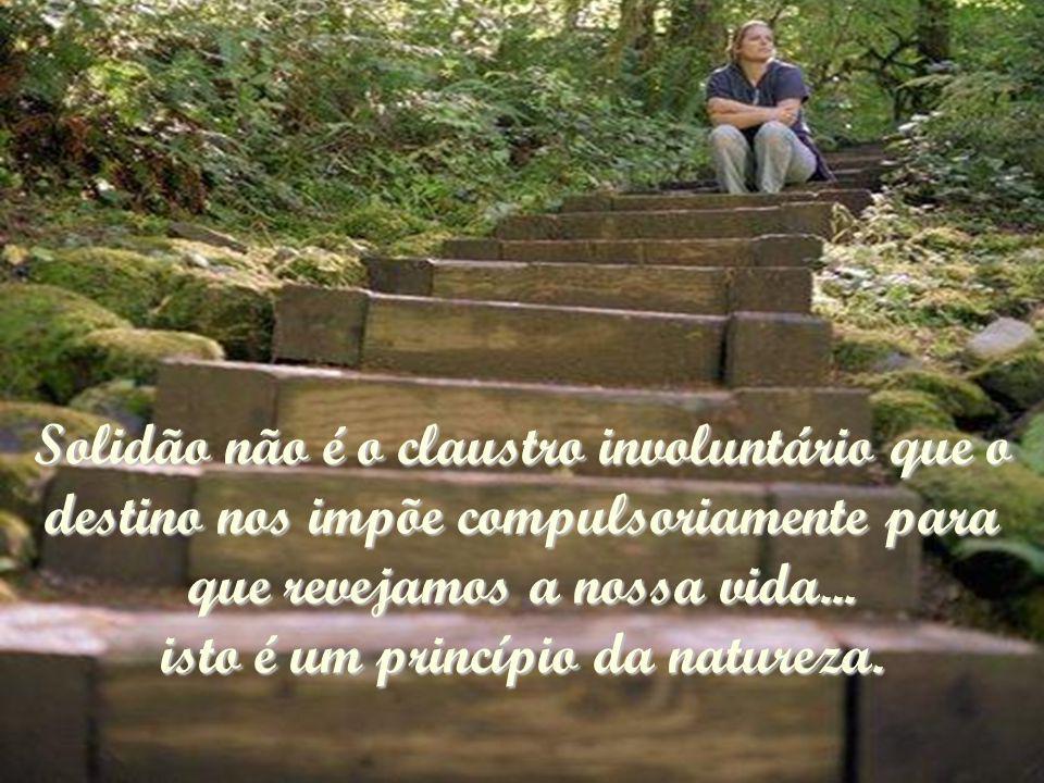 Solidão não é o claustro involuntário que o destino nos impõe compulsoriamente para que revejamos a nossa vida...
