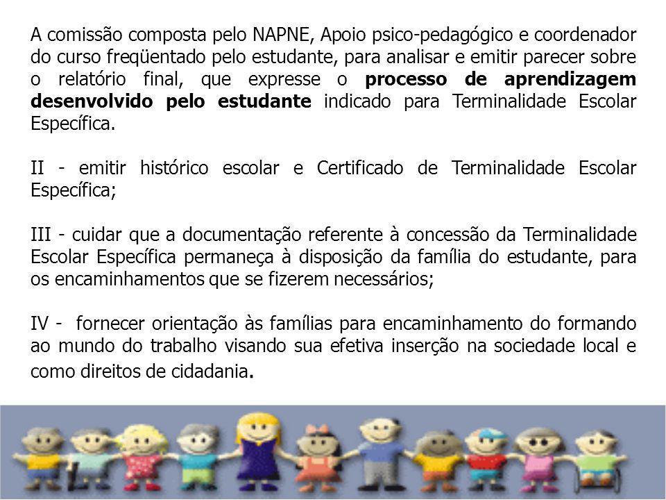 A comissão composta pelo NAPNE, Apoio psico-pedagógico e coordenador do curso freqüentado pelo estudante, para analisar e emitir parecer sobre o relat