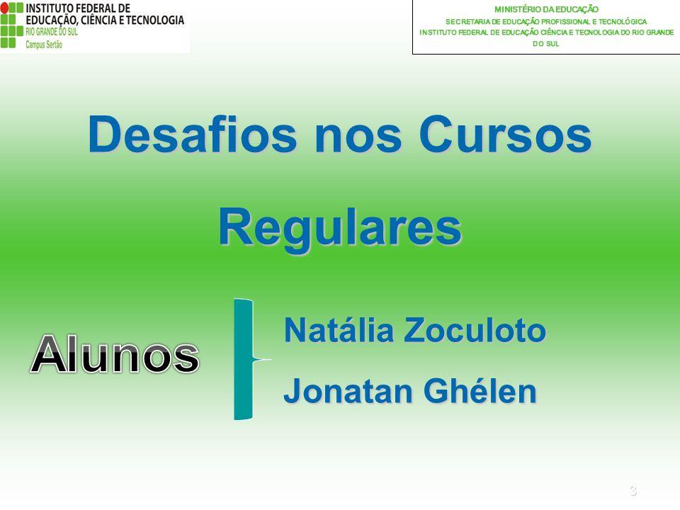 3 MINISTÉRIO DA EDUCAÇÃO SECRETARIA DE EDUCAÇÃO PROFISSIONAL E TECNOLÓGICA INSTITUTO FEDERAL DE EDUCAÇÃO CIÊNCIA E TECNOLOGIA DO RIO GRANDE DO SUL Desafios nos Cursos Regulares Natália Zoculoto Jonatan Ghélen