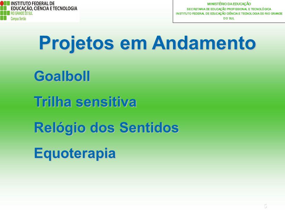 5 MINISTÉRIO DA EDUCAÇÃO SECRETARIA DE EDUCAÇÃO PROFISSIONAL E TECNOLÓGICA INSTITUTO FEDERAL DE EDUCAÇÃO CIÊNCIA E TECNOLOGIA DO RIO GRANDE DO SUL Projetos em Andamento Goalboll Trilha sensitiva Relógio dos Sentidos Equoterapia