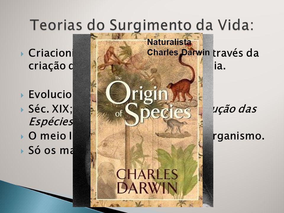 Criacionismo: Surgimento da vida através da criação divina; Livro Gênesis da Bíblia.