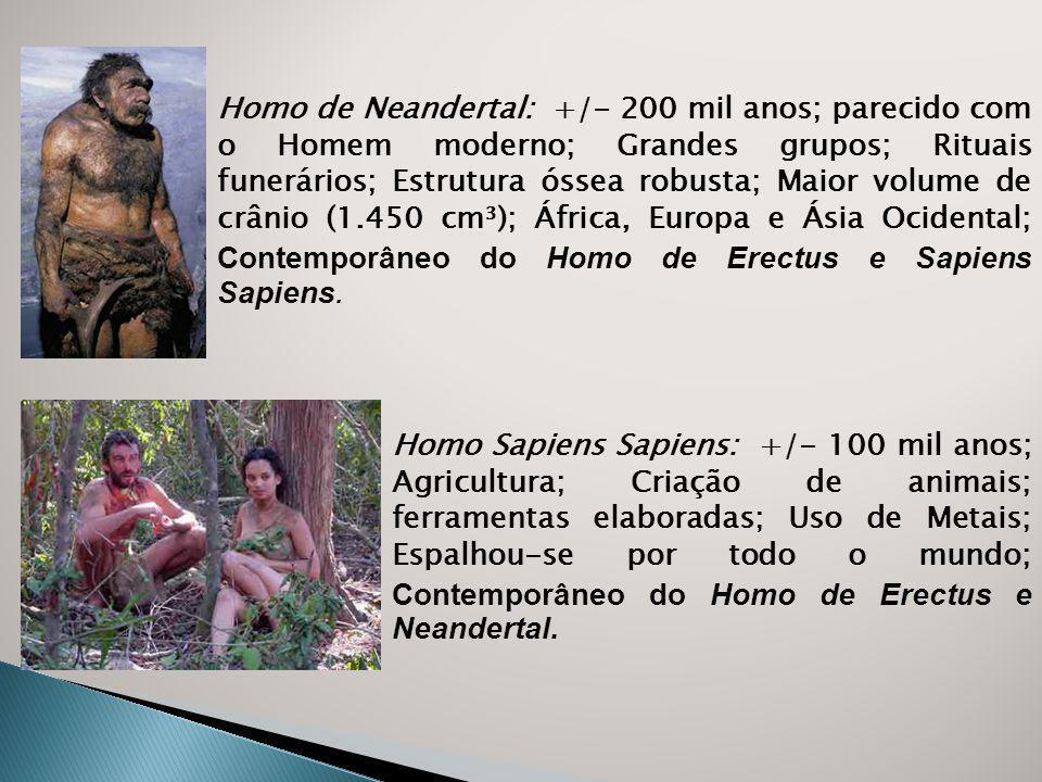 Homo de Neandertal: +/- 200 mil anos; parecido com o Homem moderno; Grandes grupos; Rituais funerários; Estrutura óssea robusta; Maior volume de crânio (1.450 cm³); África, Europa e Ásia Ocidental; Contemporâneo do Homo de Erectus e Sapiens Sapiens.