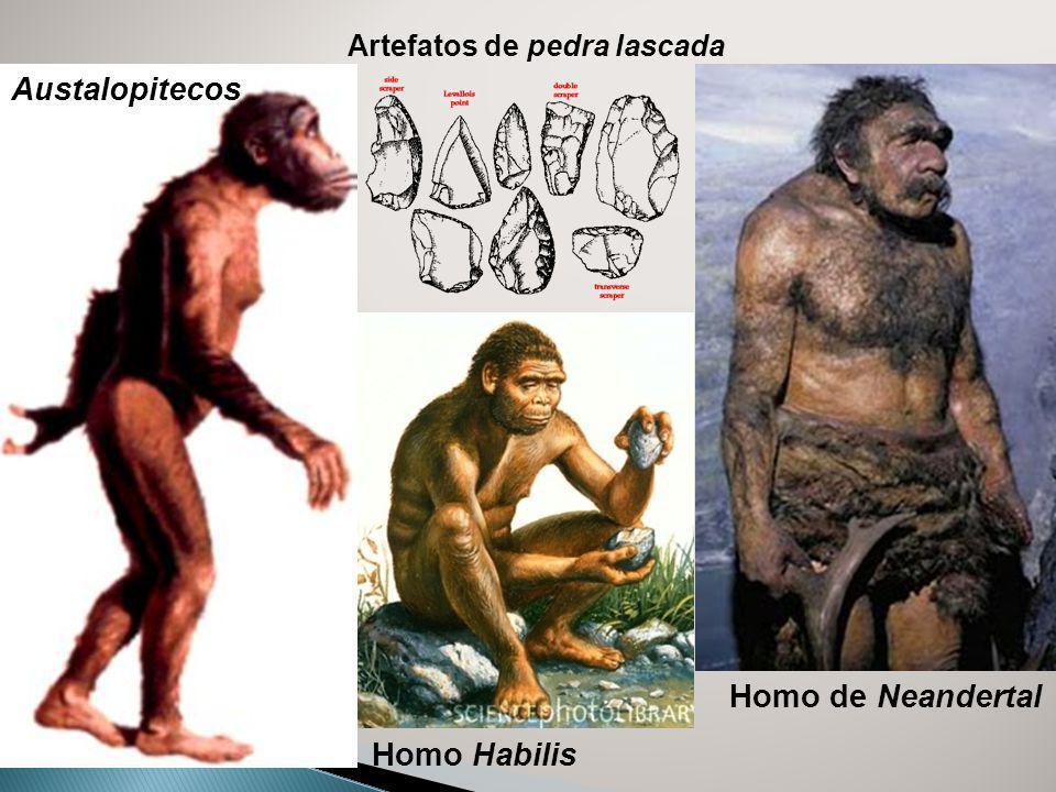 Austalopitecos Artefatos de pedra lascada Homo de Neandertal Homo Habilis