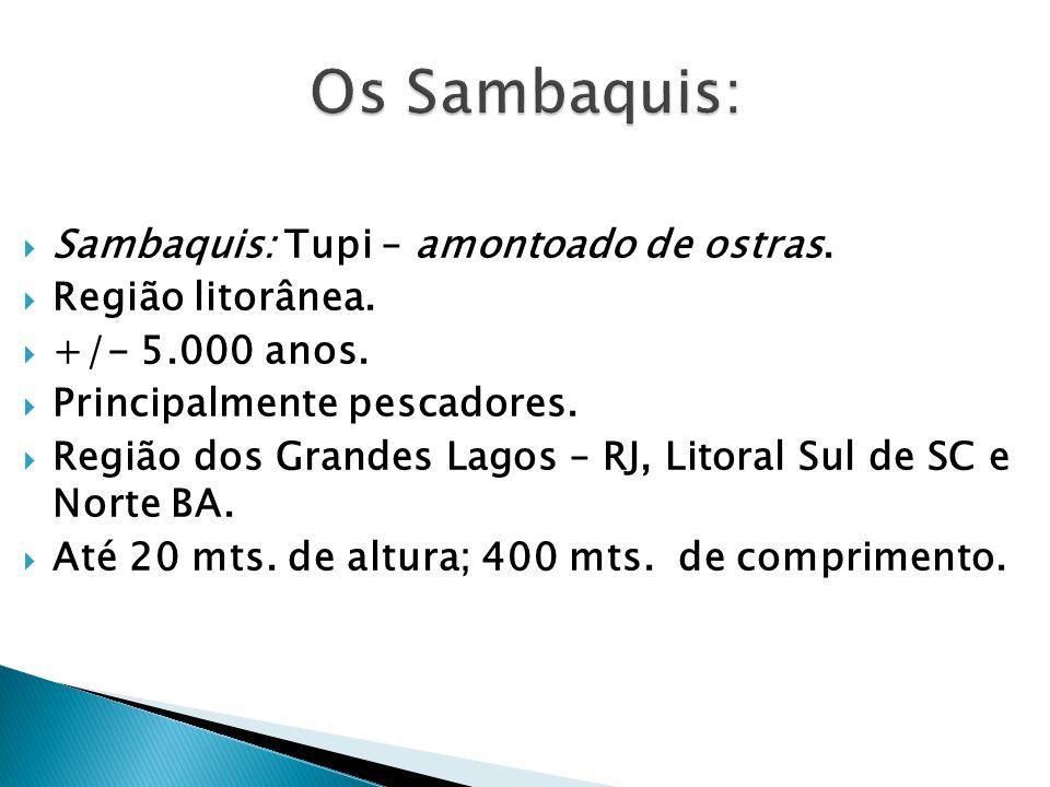 Sambaquis: Tupi – amontoado de ostras. Região litorânea. +/- 5.000 anos. Principalmente pescadores. Região dos Grandes Lagos – RJ, Litoral Sul de SC e