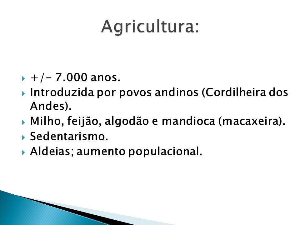 +/- 7.000 anos. Introduzida por povos andinos (Cordilheira dos Andes). Milho, feijão, algodão e mandioca (macaxeira). Sedentarismo. Aldeias; aumento p