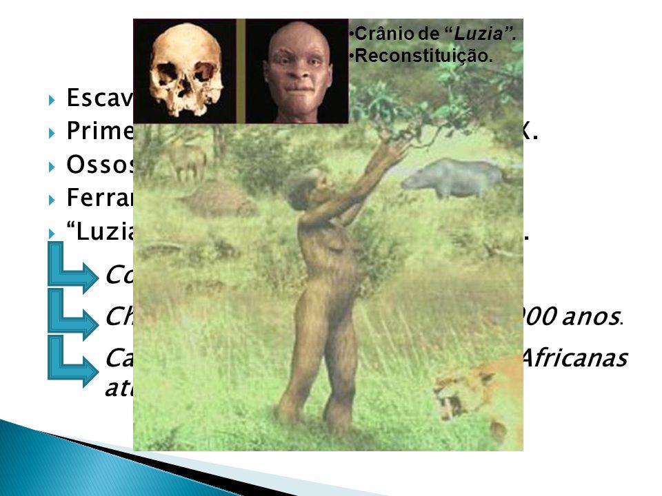 Escavações em grutas. Primeiros fósseis encontrados Séc. XIX. Ossos de animais e humanos. Ferramentas de pedra lascada. Luzia (crânio feminino) 11.500
