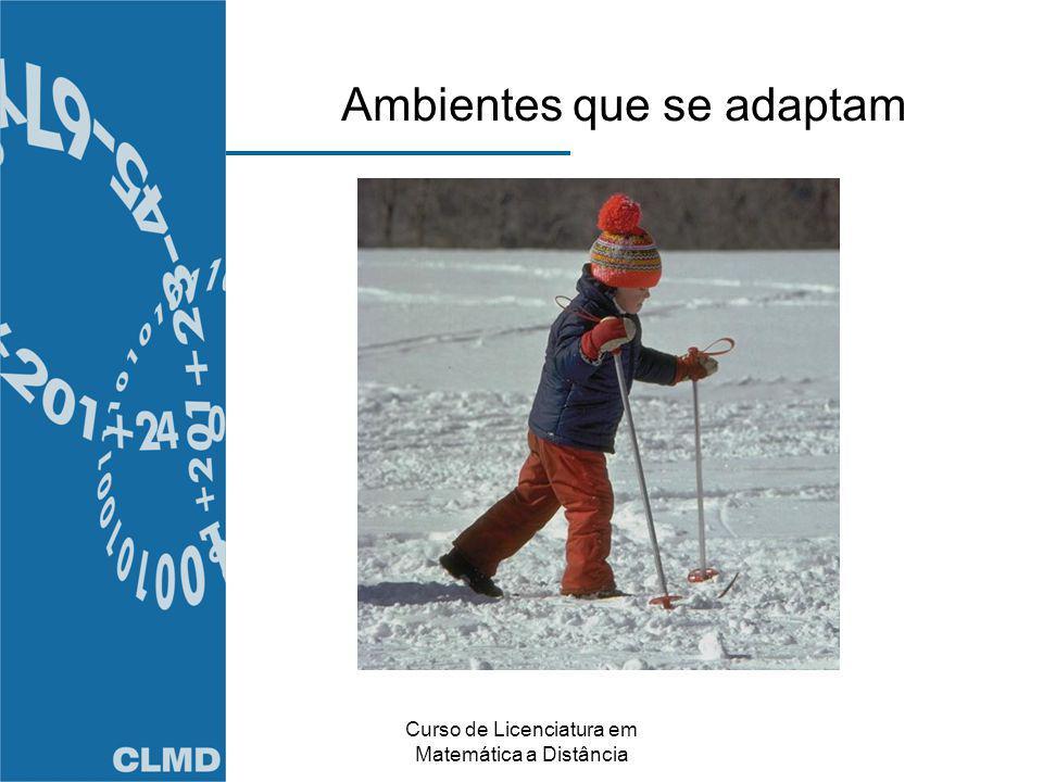 Curso de Licenciatura em Matemática a Distância Ambientes que se adaptam