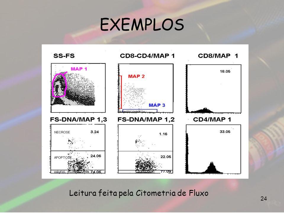 EXEMPLOS 24 Leitura feita pela Citometria de Fluxo