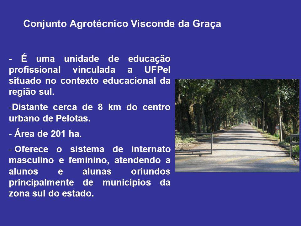 Conjunto Agrotécnico Visconde da Graça - É uma unidade de educação profissional vinculada a UFPel situado no contexto educacional da região sul. -Dist