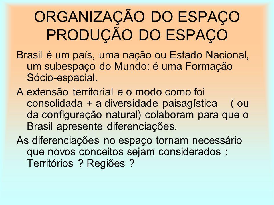 ORGANIZAÇÃO DO ESPAÇO PRODUÇÃO DO ESPAÇO Brasil é um país, uma nação ou Estado Nacional, um subespaço do Mundo: é uma Formação Sócio-espacial. A exten