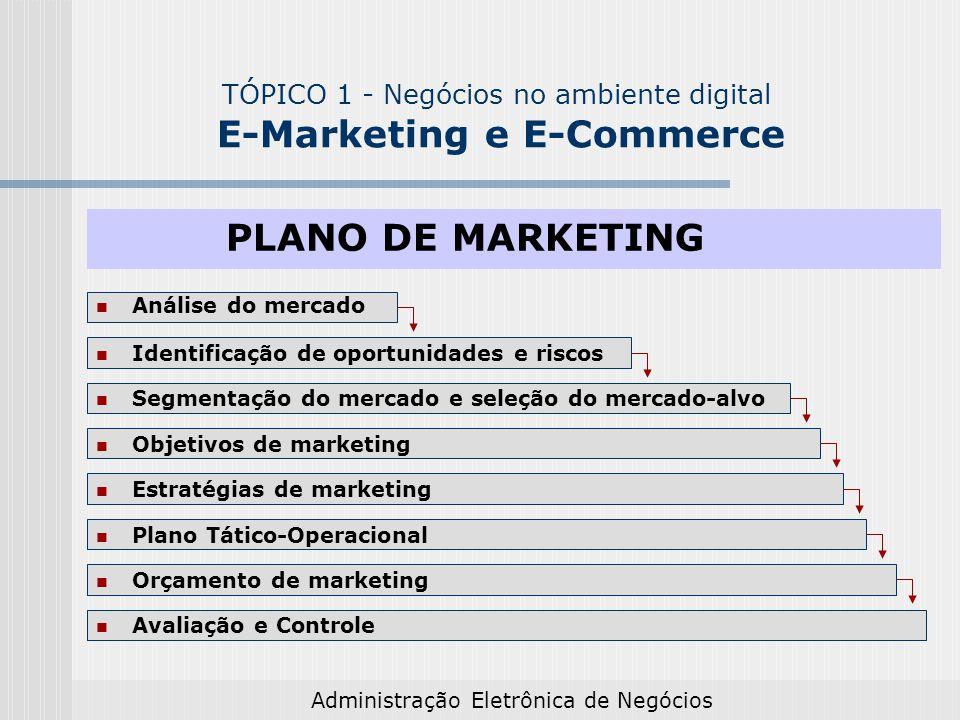 Administração Eletrônica de Negócios Análise do mercado Identificação de oportunidades e riscos Objetivos de marketing Estratégias de marketing Segmen