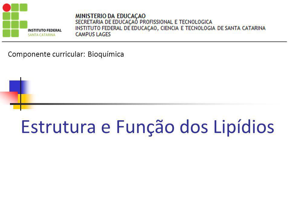 Estrutura e Função dos Lipídios Componente curricular: Bioquímica