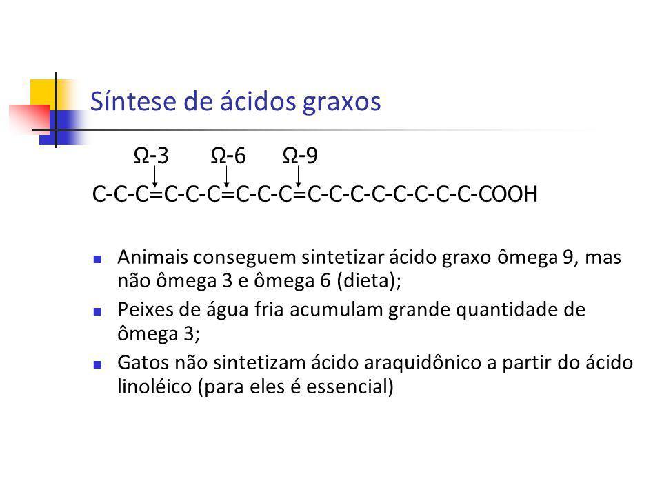 Síntese de ácidos graxos C-C-C=C-C-C=C-C-C=C-C-C-C-C-C-C-C-COOH Animais conseguem sintetizar ácido graxo ômega 9, mas não ômega 3 e ômega 6 (dieta); P