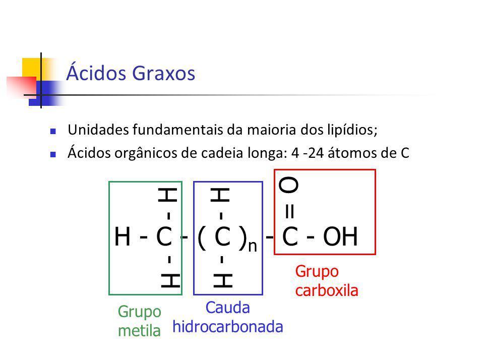 Predominantemente, não ocorrem em células e tecidos na forma livre (são covalentemente ligados a diferentes classes de lipídios); Diferem pela extensão da cadeia e pelo número de duplas ligações – saturadas e insaturadas (mais comuns); Praticamente todos encontrados na natureza possuem um número par de átomos de C – C 16 e C 18 ; Insaturados – comum entre os C 9 e C 10 : 9 ; Ligação dupla nunca conjugadas – sempre separadas por grupos metilenos: -CH=CH-CH 2 -CH=CH- Ácidos Graxos