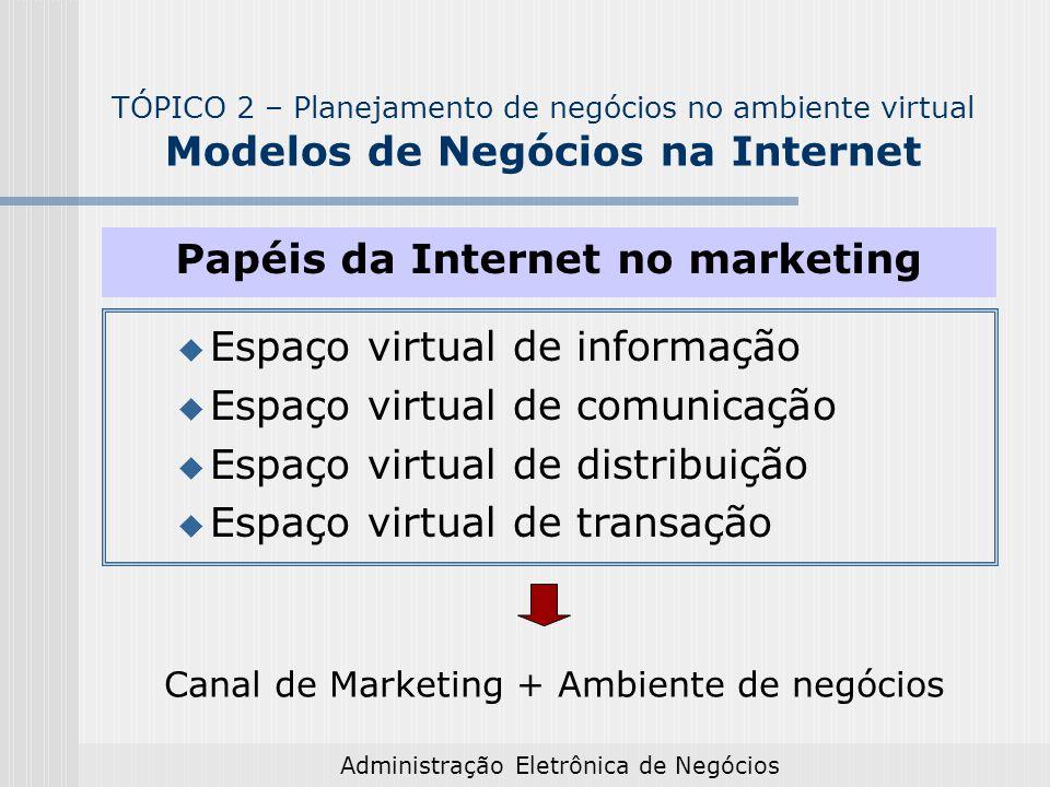 Administração Eletrônica de Negócios Papéis da Internet no marketing Espaço virtual de informação Espaço virtual de comunicação Espaço virtual de dist