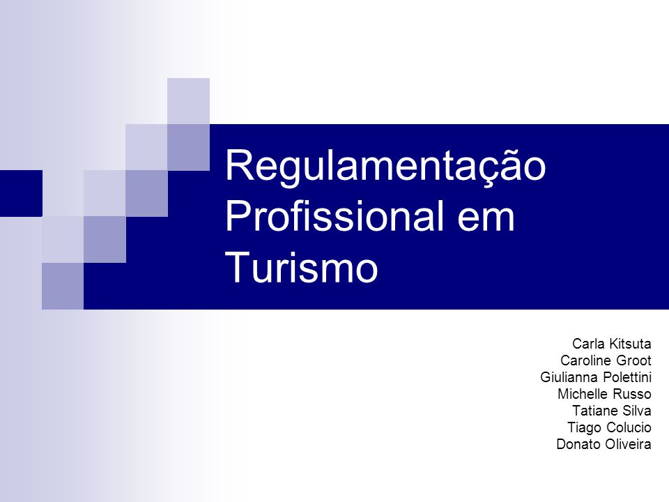 Projetos de Lei que Pretendem Regulamentar a Profissão Agente de Turismo (1) PL 4.078/2008 – Autor Deputado Vital do Rêgo Filho (PMDB/PB) Turismólogo (1) PL 6.906/2002 – Autor senador Moreira Mendes (PFL/RO)