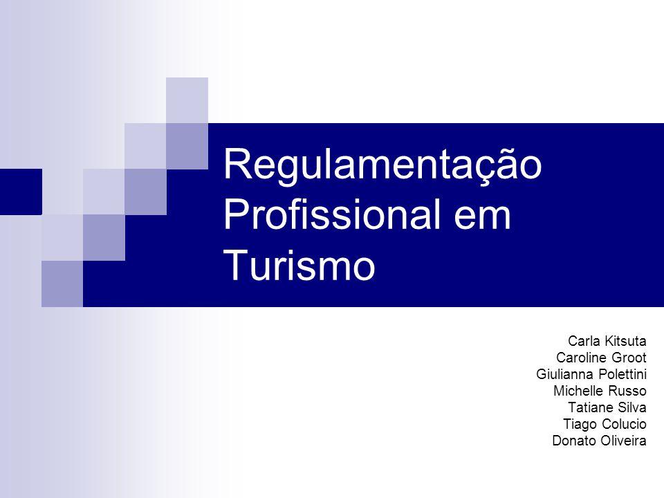 Regulamentação Profissional em Turismo Carla Kitsuta Caroline Groot Giulianna Polettini Michelle Russo Tatiane Silva Tiago Colucio Donato Oliveira
