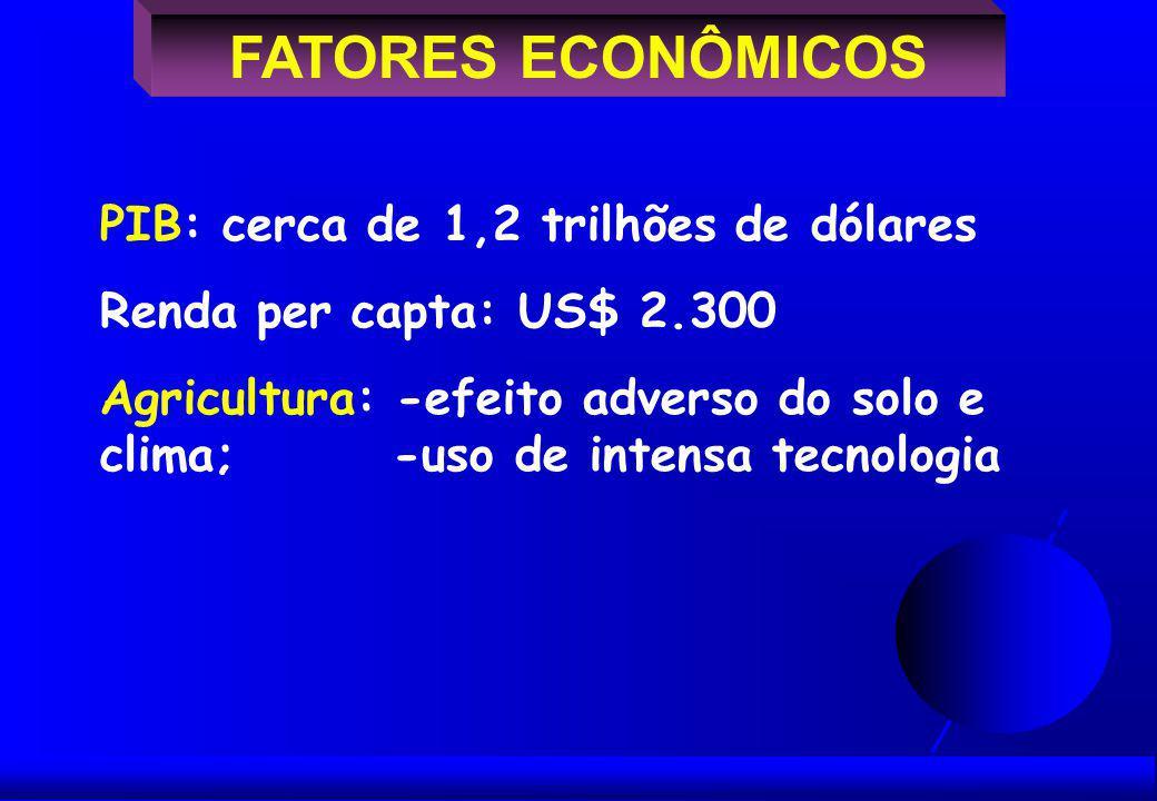 FATORES ECONÔMICOS PIB: cerca de 1,2 trilhões de dólares Renda per capta: US$ 2.300 Agricultura: -efeito adverso do solo e clima; -uso de intensa tecnologia
