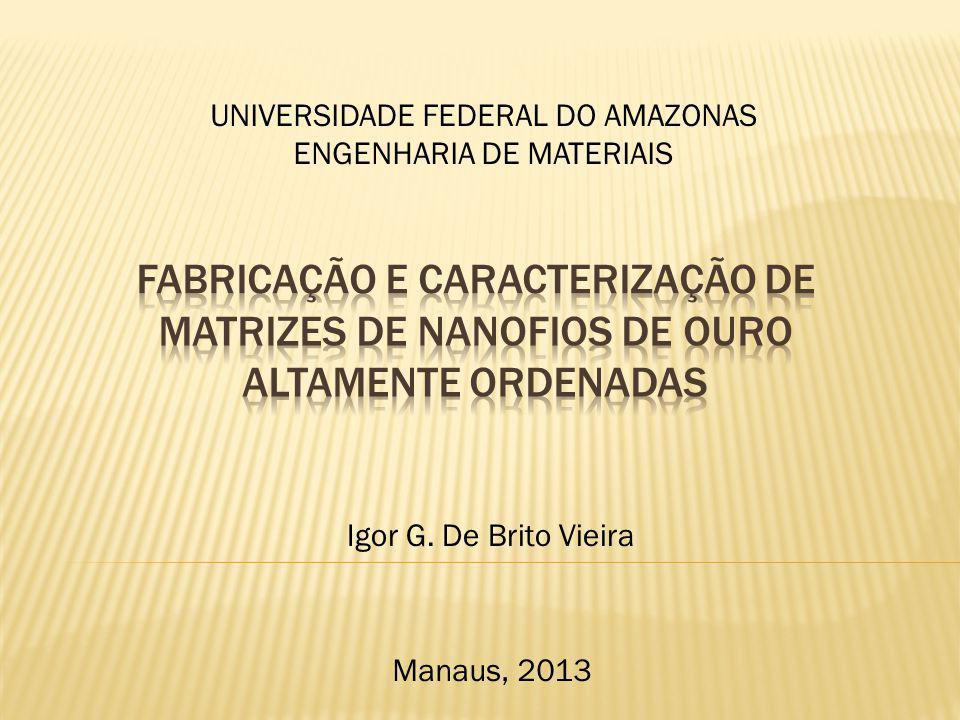 Igor G. De Brito Vieira UNIVERSIDADE FEDERAL DO AMAZONAS ENGENHARIA DE MATERIAIS Manaus, 2013